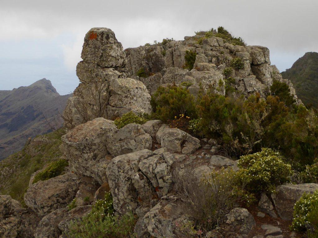 Ruta de sendersimo en Tenerife en Teno
