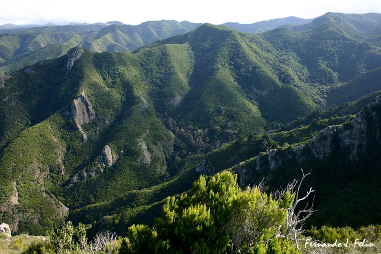 Del Monte del Agua a Talavera y los Silos: Salida que haremos el domingo 16 de junio a recorrer y disfrutar de los impresionantes que nos depara esta ruta dentro del Parque Rural de Teno