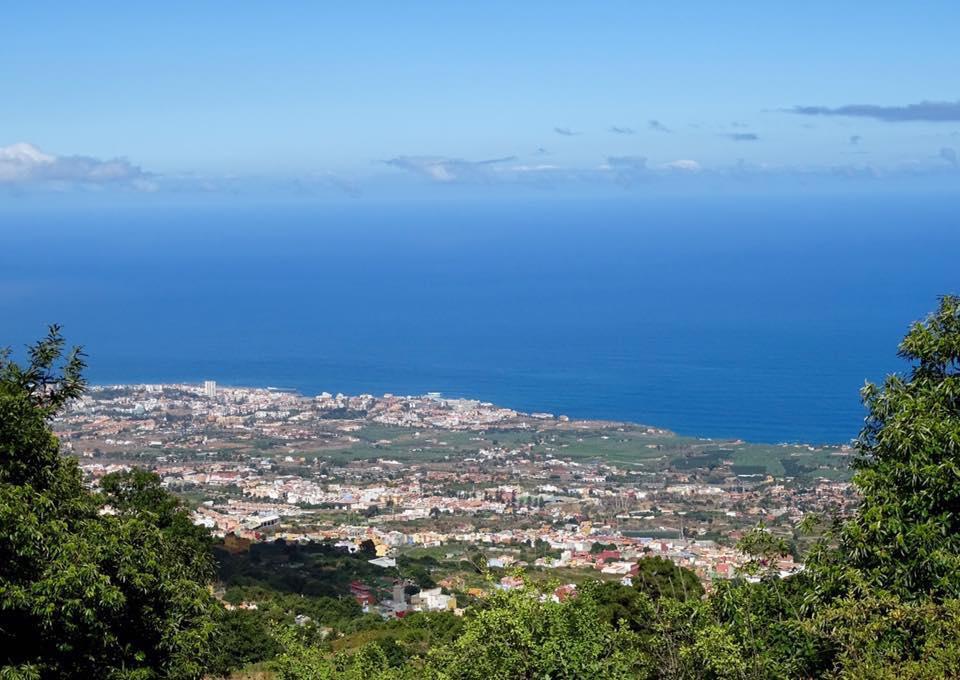 Senderos de castaños en Tenerife