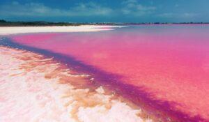 Ven con nosotros y descubre hermosos rincones naturales con nuestro Viaje a Levante y …. Laguna Rosa